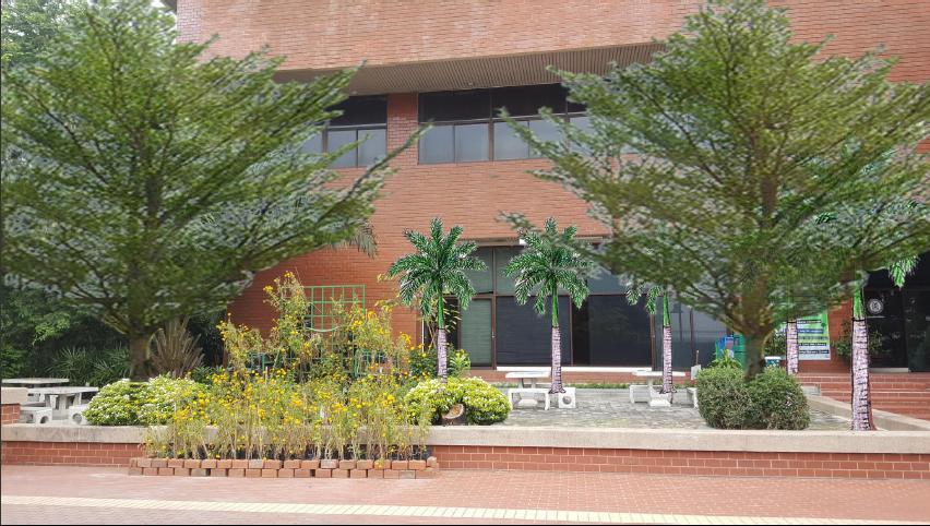 ภาพที่ออกแบบเพื่อปรับปรุงโดยมีต้นปาล์มและต้นหูกระจง